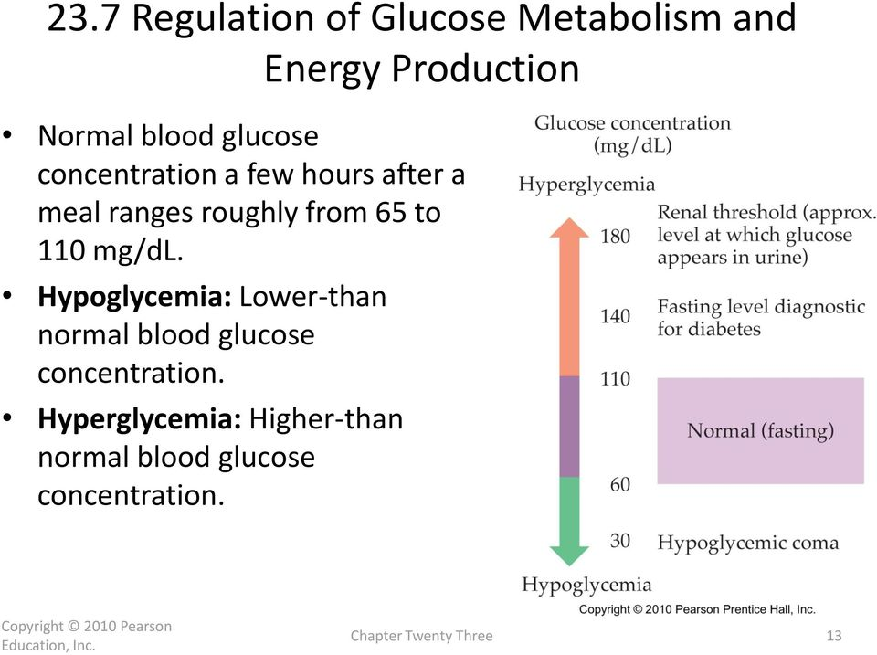 110 mg/dl. Hypoglycemia: Lower-than normal blood glucose concentration.