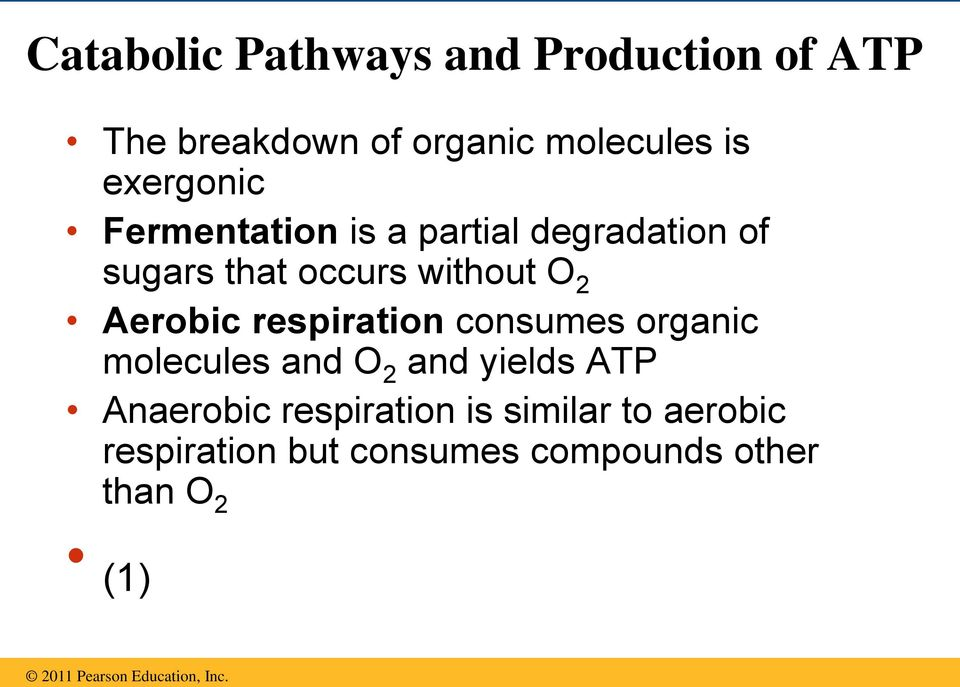 Aerobic respiration consumes organic molecules and O 2 and yields ATP Anaerobic