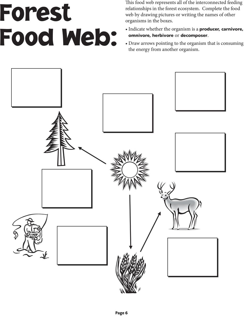 Complete the food web by drawing pictures or writing the names of other organisms in the boxes.