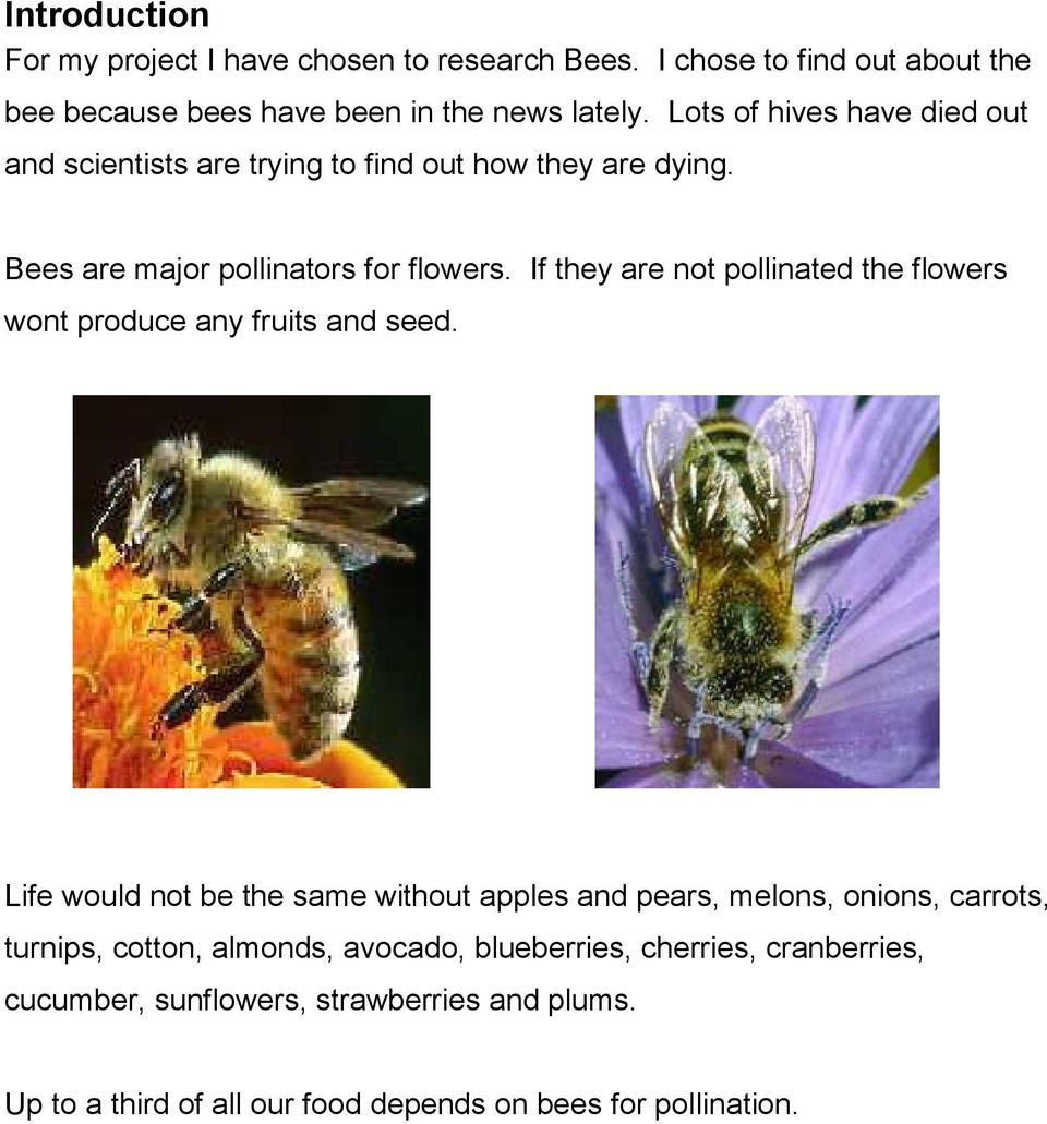 If they are not pollinated the flowers wont produce any fruits and seed.