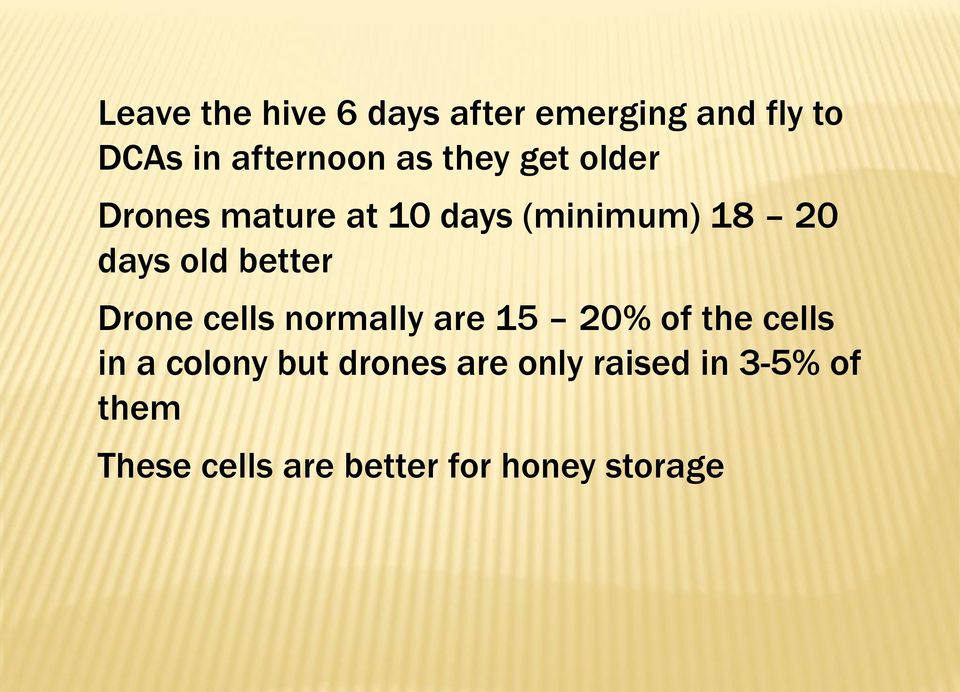 better Drone cells normally are 15 20% of the cells in a colony but