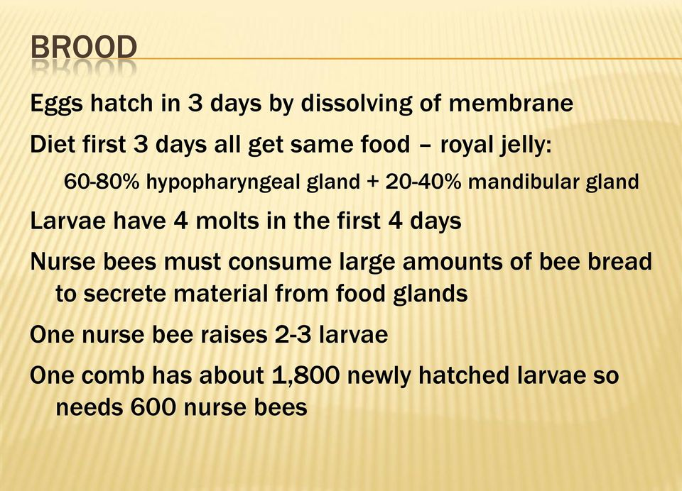 days Nurse bees must consume large amounts of bee bread to secrete material from food glands One