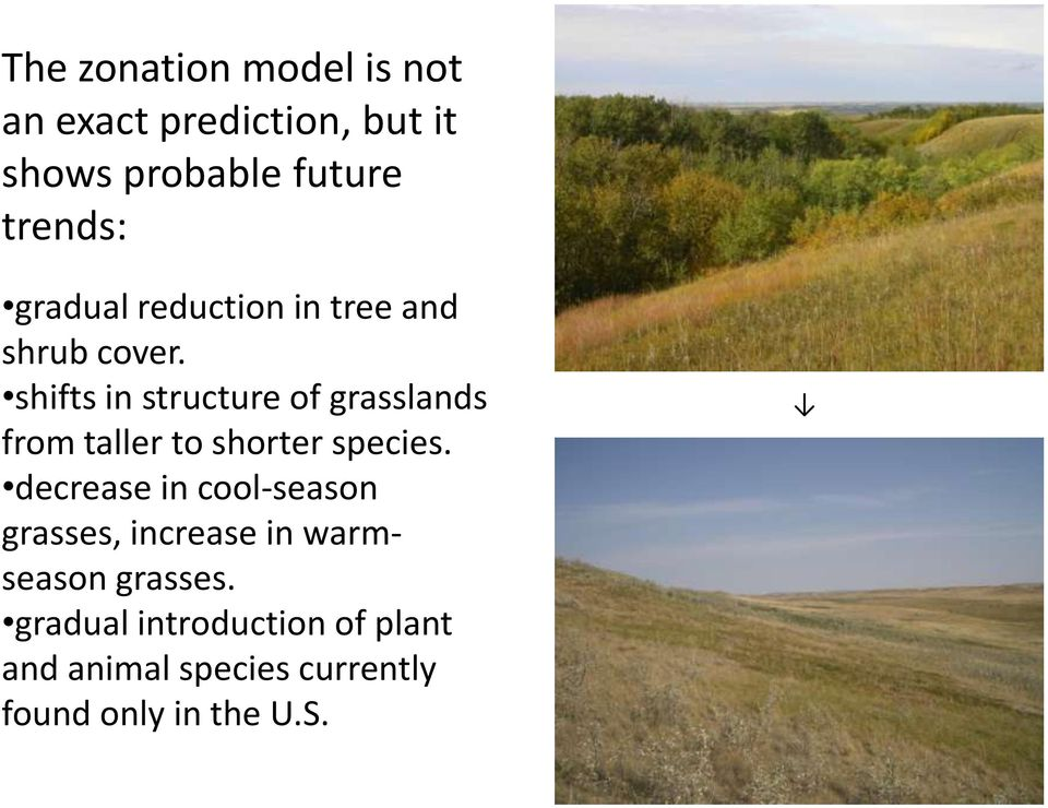 shifts in structure of grasslands from taller to shorter species.