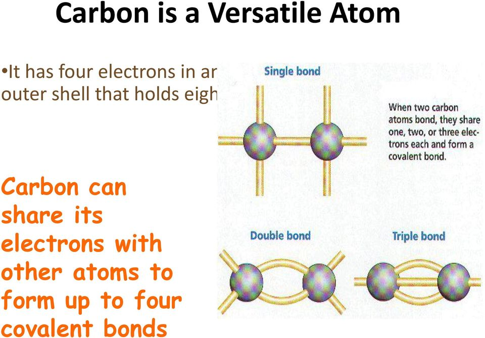 eight Carbon can share its electrons with
