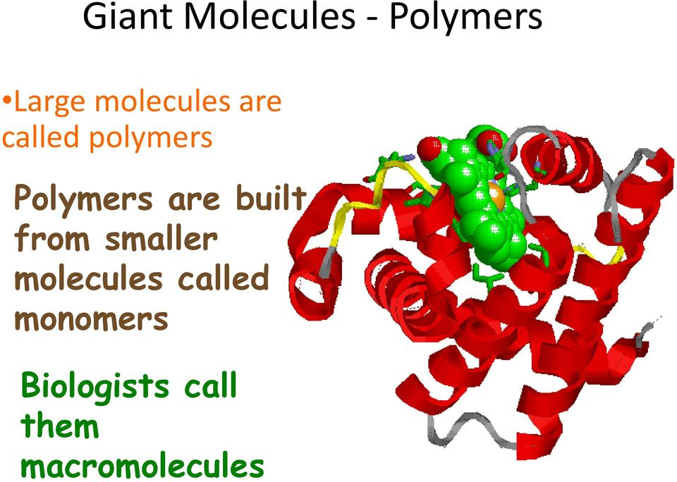 are built from smaller molecules