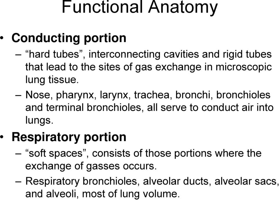 Nose, pharynx, larynx, trachea, bronchi, bronchioles and terminal bronchioles, all serve to conduct air into lungs.
