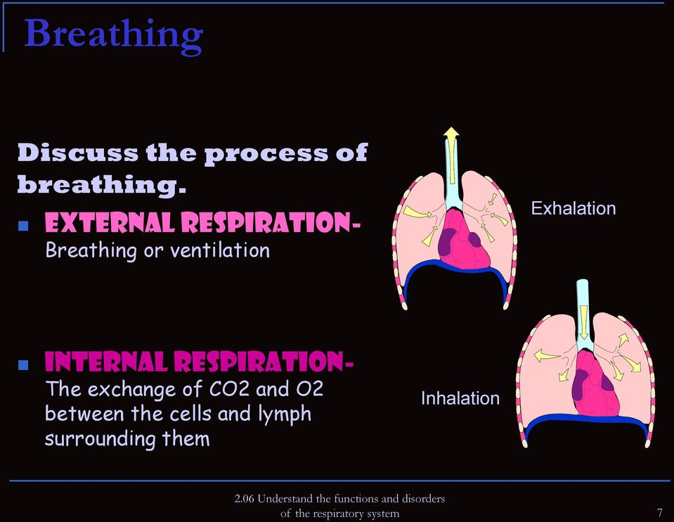 Internal respiration- The exchange of CO2 and O2 between