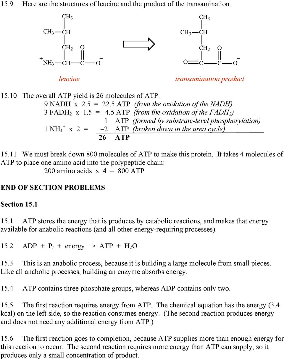 5 ATP (from the oxidation of the FADH 2 ) 1 ATP (formed by substrate-level phosphorylation) 1 NH + 4 x 2 = 2 ATP (broken down in the urea cycle) 26 ATP 15.