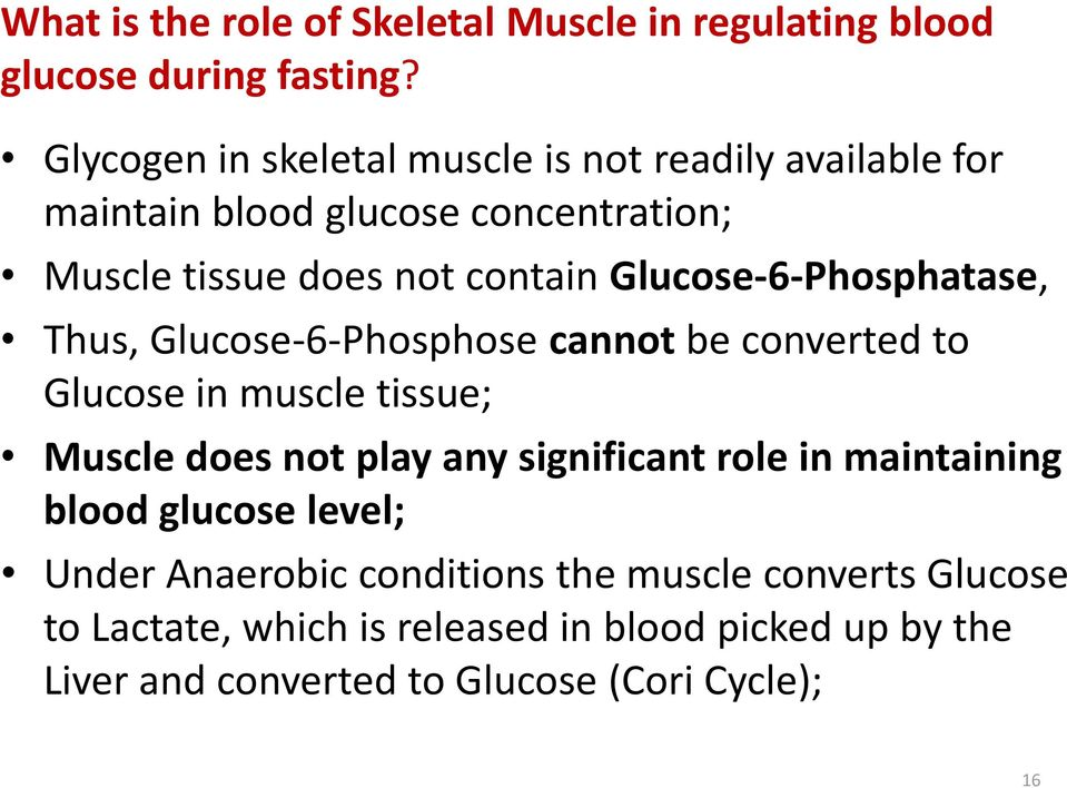 Glucose-6-Phosphatase, Thus, Glucose-6-Phosphose cannot be converted to Glucose in muscle tissue; Muscle does not play any significant