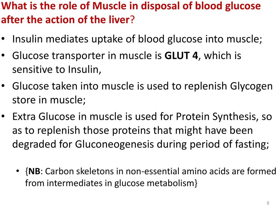 taken into muscle is used to replenish Glycogen store in muscle; Extra Glucose in muscle is used for Protein Synthesis, so as to replenish