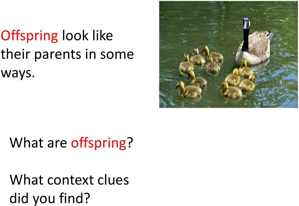 ways. What are offspring?