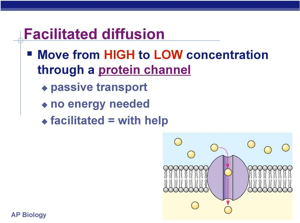 protein channel passive transport