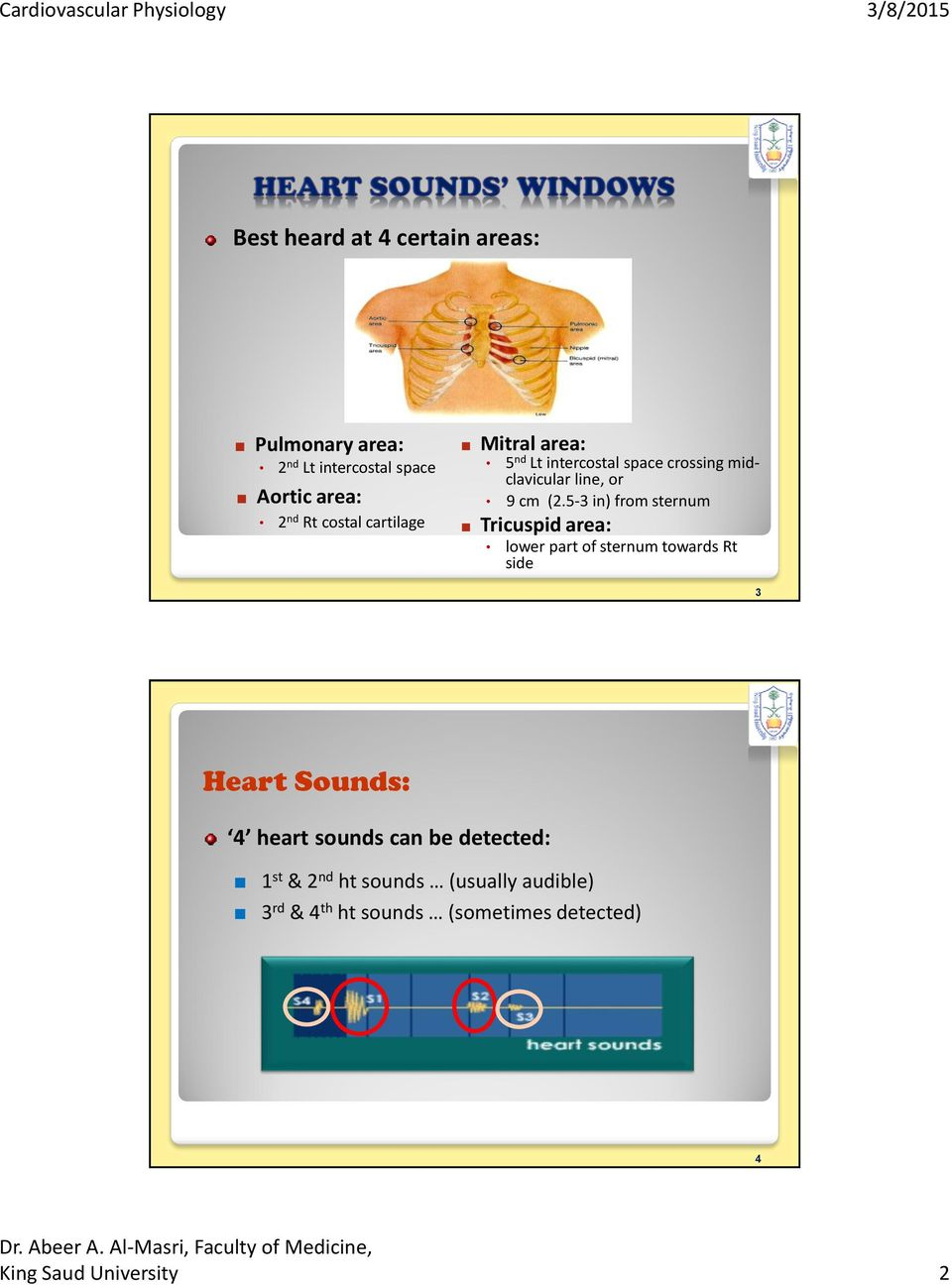 5-3 in) from sternum Tricuspid area: lower part of sternum towards Rt side 3 Heart Sounds: 4 heart