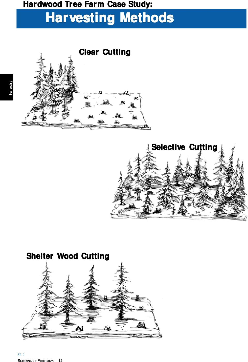 Clear Cutting Selective
