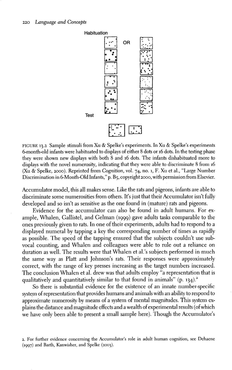 The infants dishabituated more to displays with the novel numerosity, indicating that they were able to discriminate B from 16 (X,t & Spelke, zooo). Reprinted from Cognition, vol. 74, no.1, F.