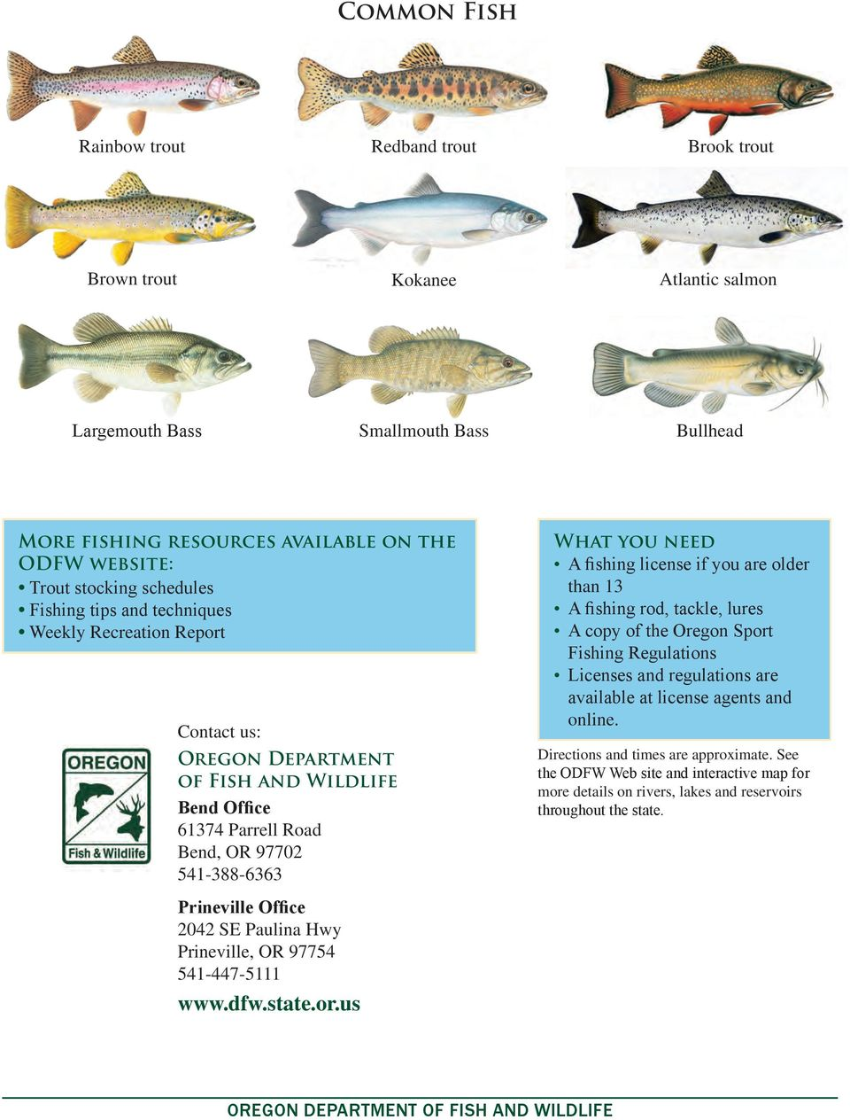 50 places 90 minutes to go fishing within of bend pdf for Odfw fish stocking