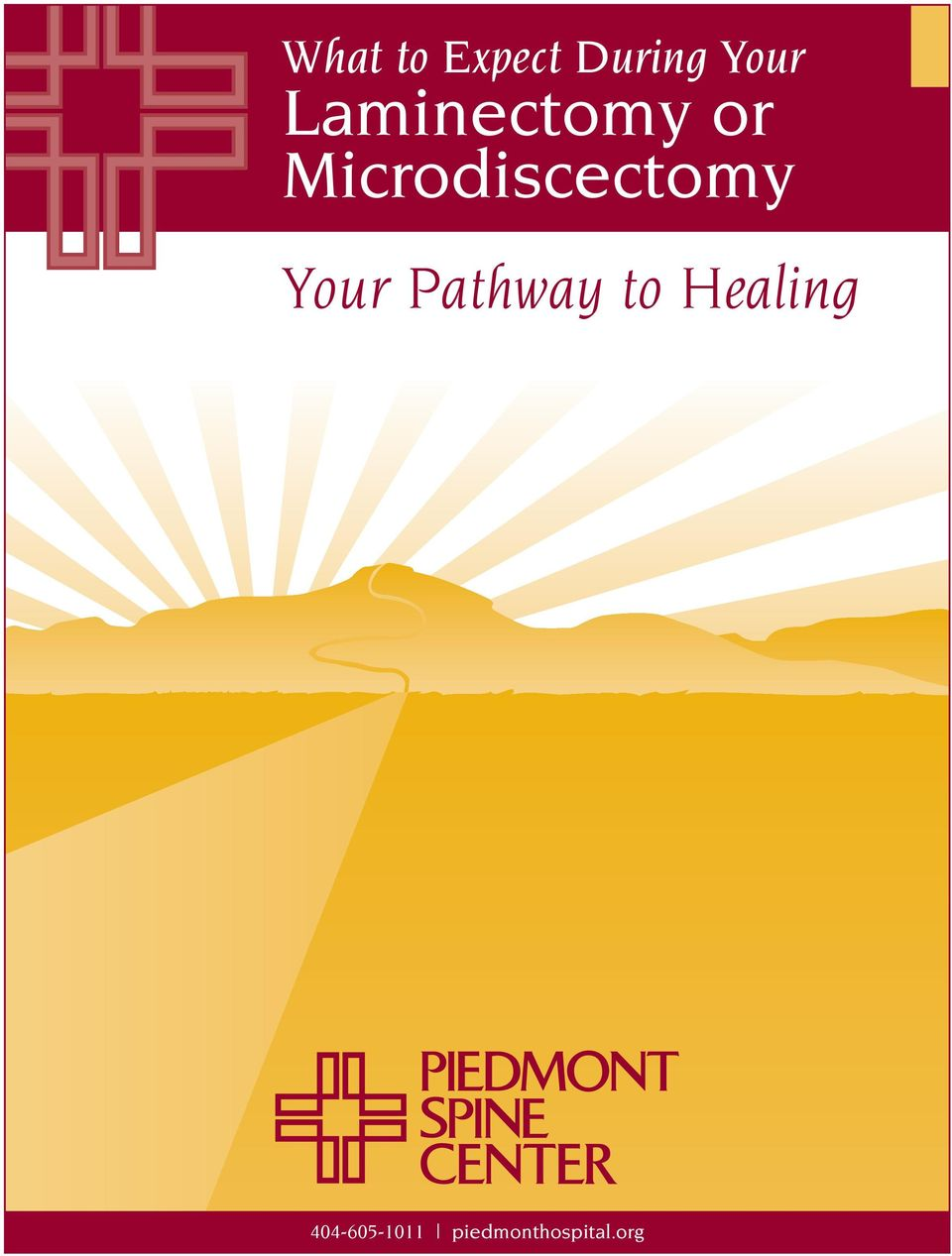 Microdiscectomy Your Pathway