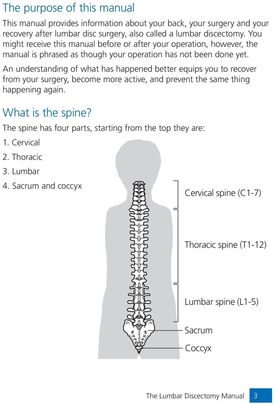 An understanding of what has happened better equips you to recover from your surgery, become more active, and prevent the same thing happening again. What is the spine?