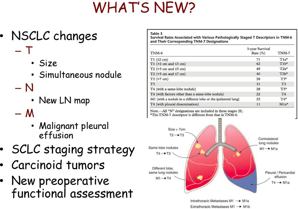 SCLC staging strategy Carcinoid tumors New