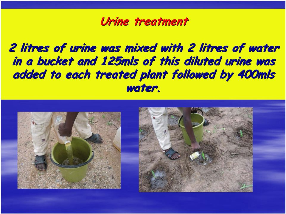 and 125mls of this diluted urine was added