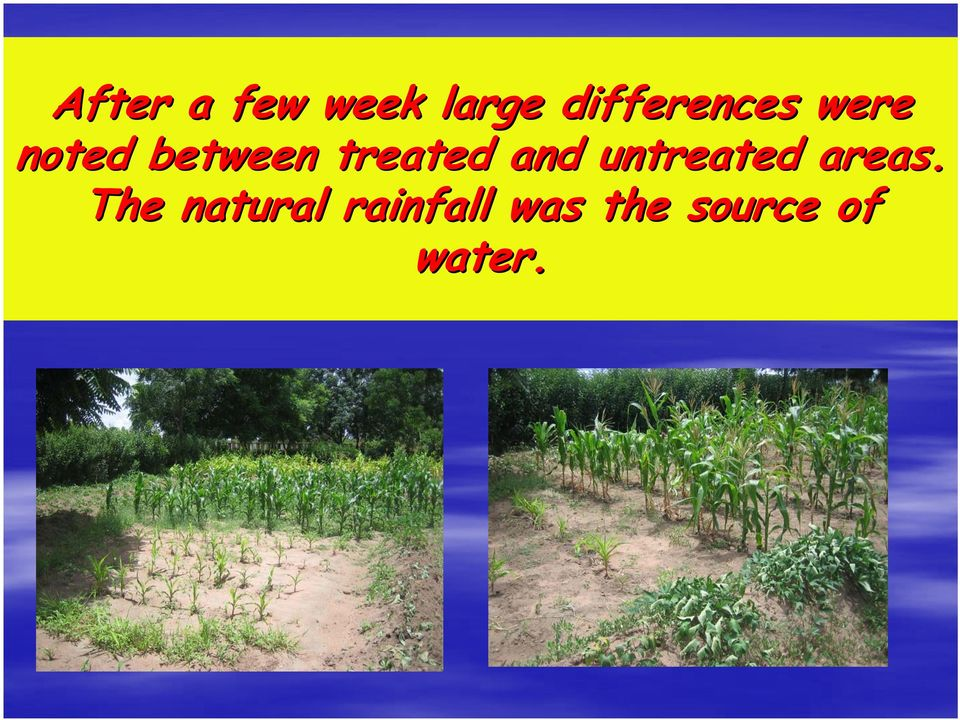 treated and untreated areas.