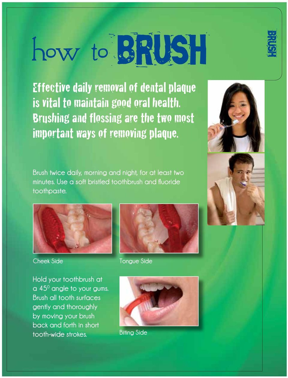 Brush twice daily, morning and night, for at least two minutes. Use a soft bristled toothbrush and fluoride toothpaste.