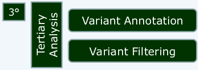 VARIANT FILTERING AND PRIORIZATION COMMON STEPS: PURPOSE: Identify pathogenic or disease-associated mutation(s) Reduce candidate variants to reportable set Remove poor quality variant calls Remove