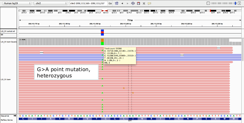 5 VISUALIZATION IGV (or Genome Browser,