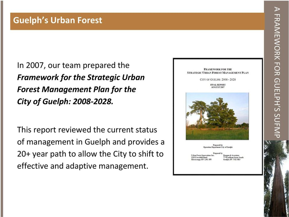 This report reviewed the current status of management in Guelph and provides a 20+