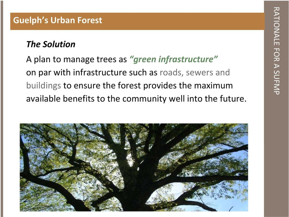and buildings to ensure the forest provides the maximum available