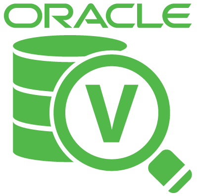 NEW Veeam Explorer for Oracle This new Explorer provides two key capabilities: Transaction-level recovery