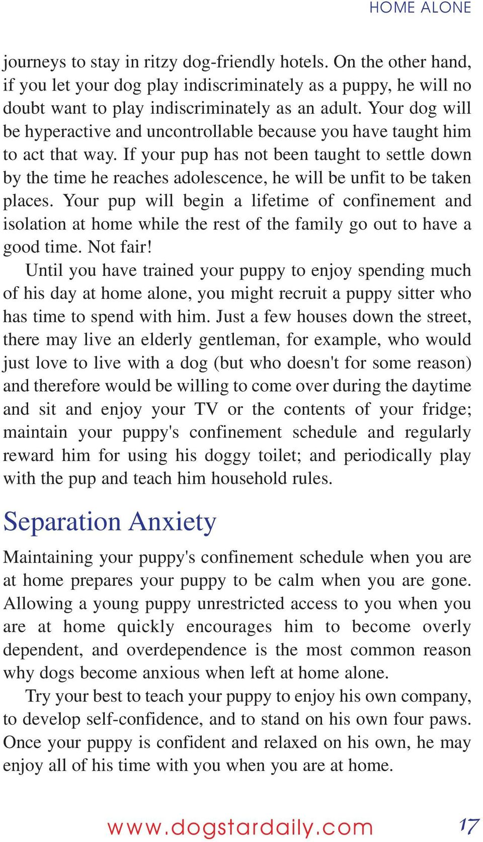 If your pup has not been taught to settle down by the time he reaches adolescence, he will be unfit to be taken places.