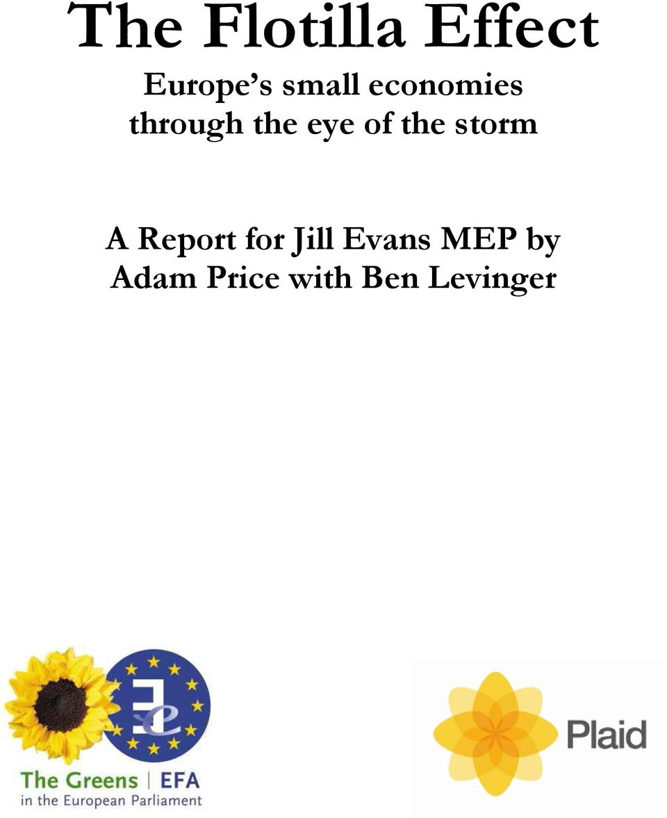 of the storm A Report for Jill