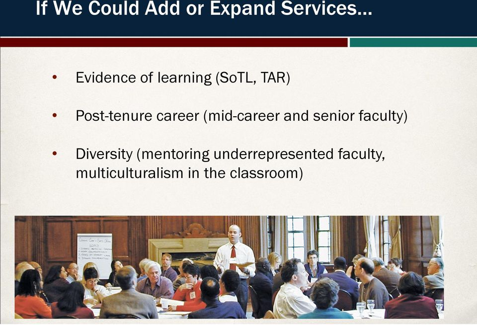 (mid-career and senior faculty) Diversity