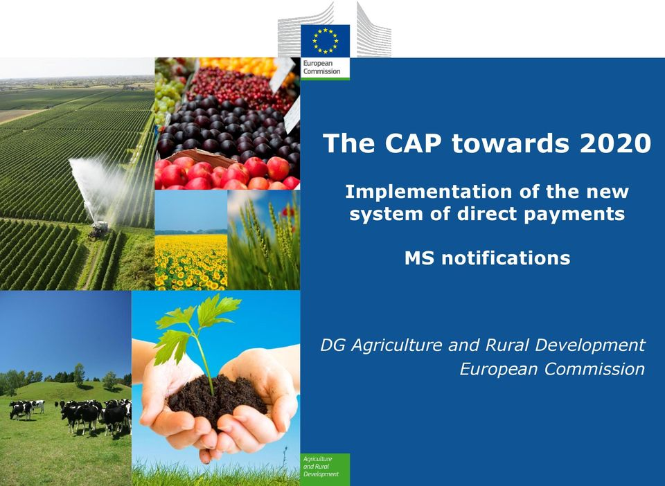 MS notifications DG Agriculture and