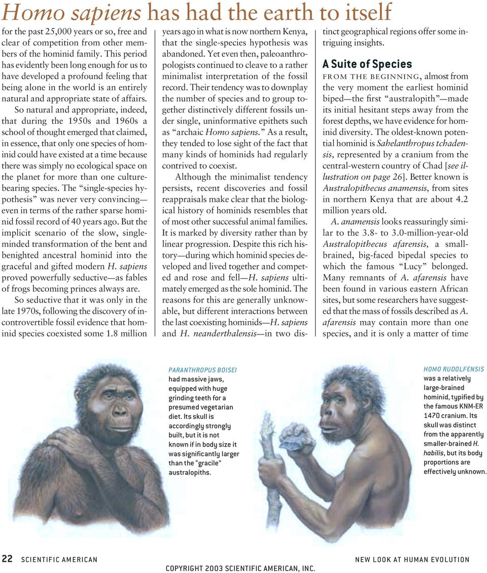 So natural and appropriate, indeed, that during the 1950s and 1960s a school of thought emerged that claimed, in essence, that only one species of hominid could have existed at a time because there