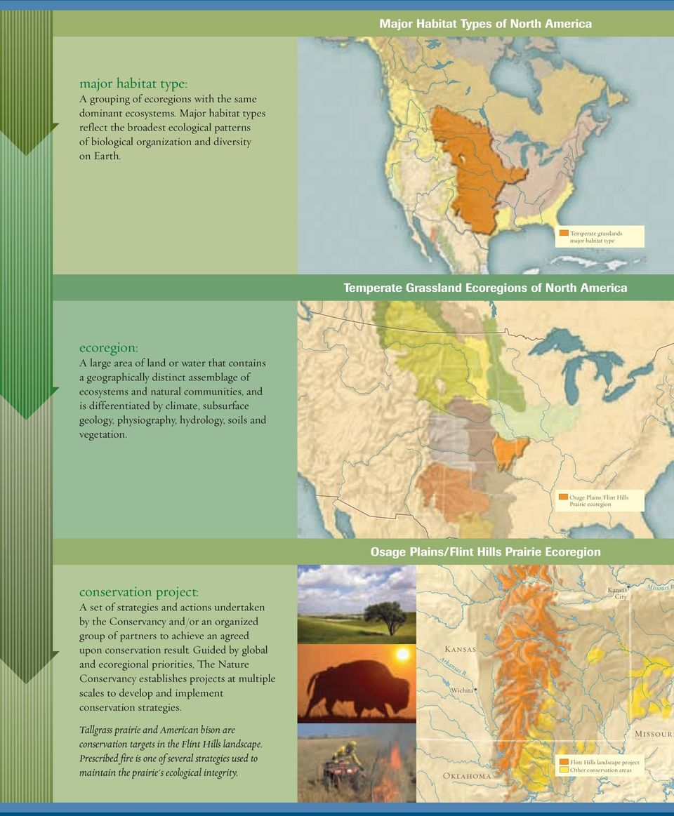 Temperate grasslands major habitat type Temperate Grassland Ecoregions of North America ecoregion: A large area of land or water that contains a geographically distinct assemblage of ecosystems and