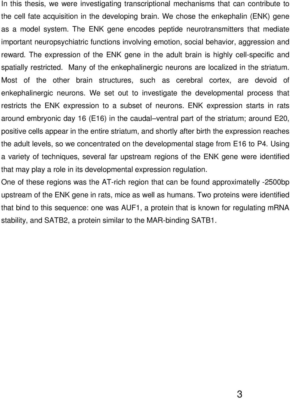 The expression of the ENK gene in the adult brain is highly cell-specific and spatially restricted. Many of the enkephalinergic neurons are localized in the striatum.