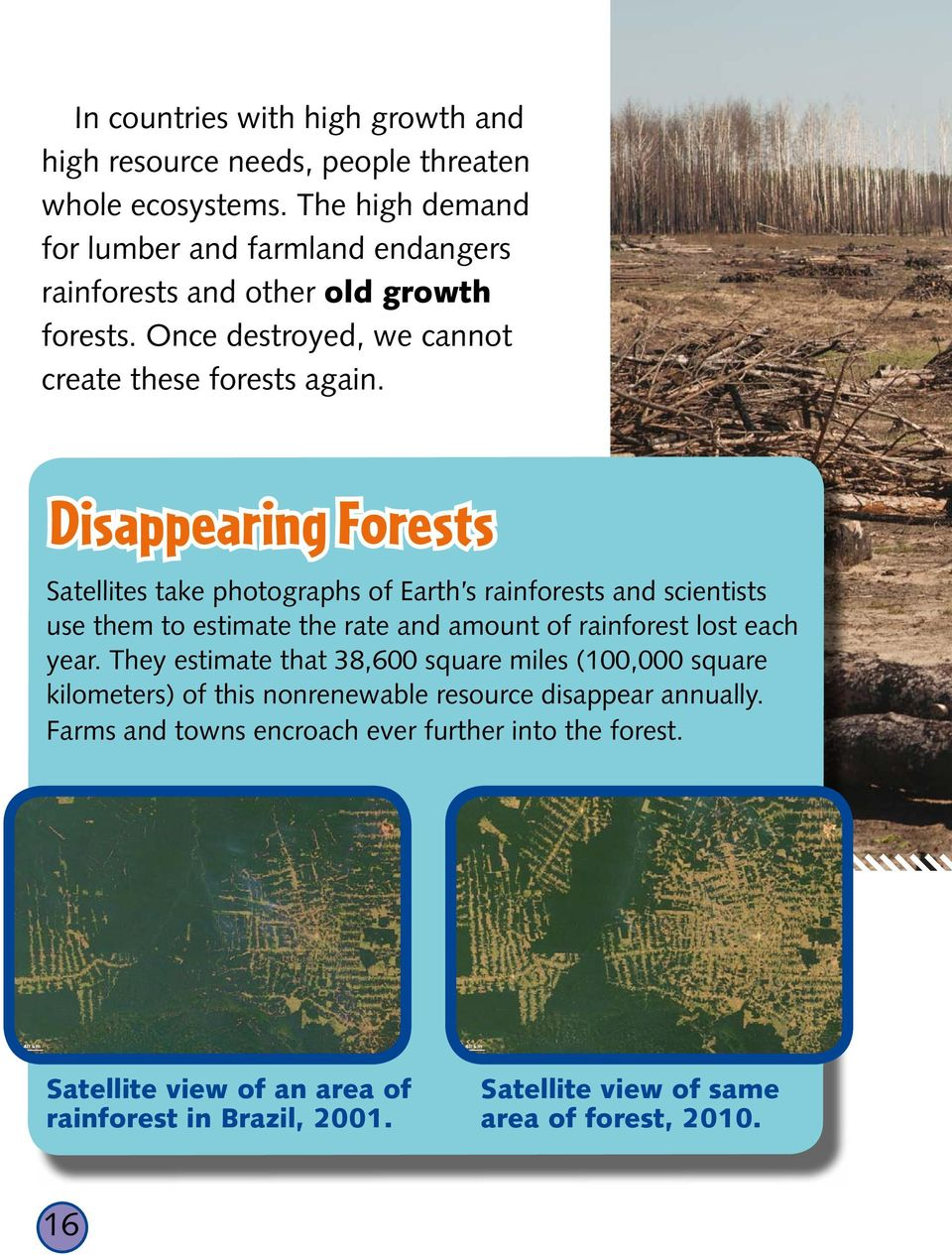 Disappearing Forests Satellites take photographs of Earth s rainforests and scientists use them to estimate the rate and amount of rainforest lost each year.