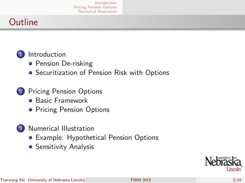 Framework 3 Example: Hypothetical Pension Options