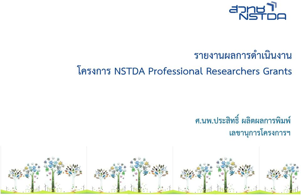 Researchers Grants ศ.นพ.