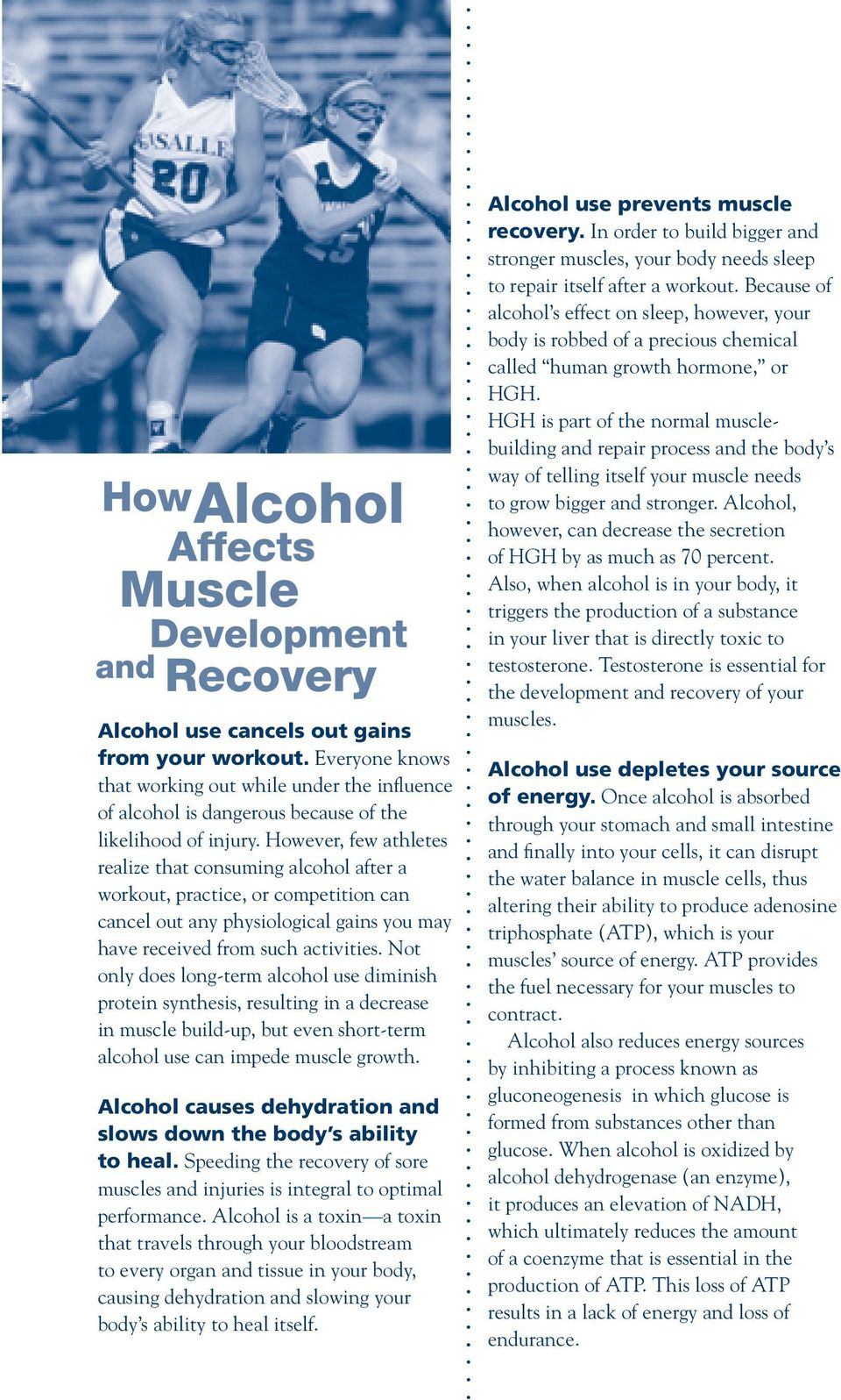 Not only does long-term alcohol use diminish protein synthesis, resulting in a decrease in muscle build-up, but even short-term alcohol use can impede muscle growth.