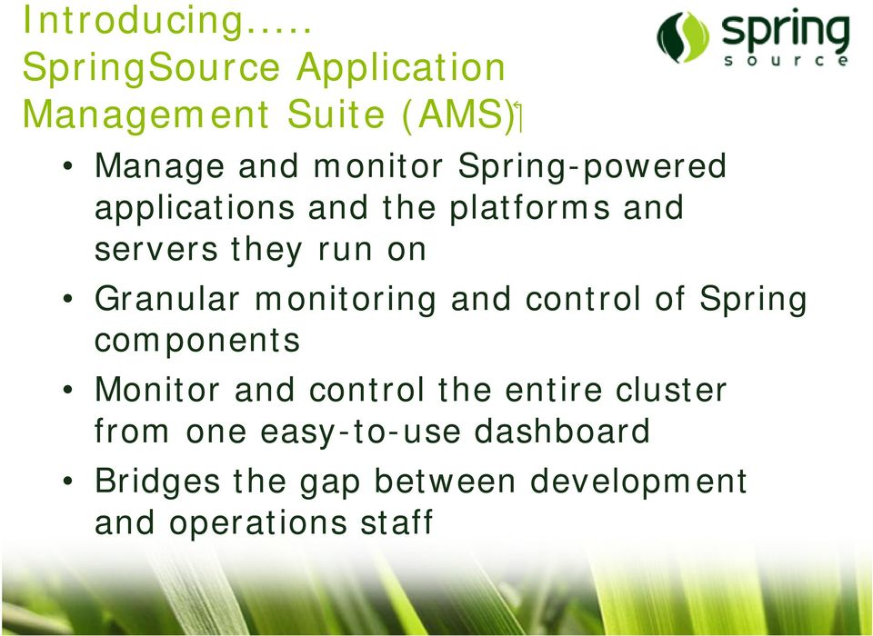 Spring-powered applications and the platforms and servers they run on Granular