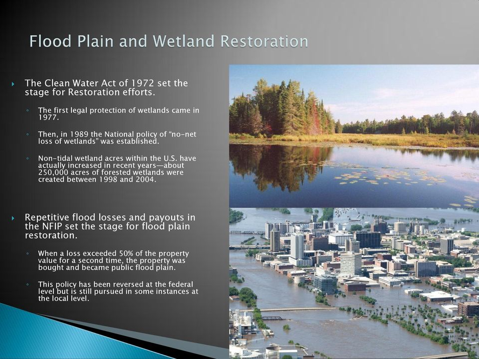 have actually increased in recent years about 250,000 acres of forested wetlands were created between 1998 and 2004.