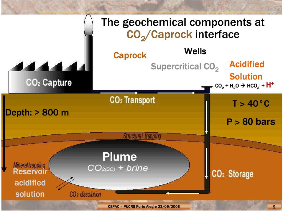 CO2 storage: Caprock integrity and clay