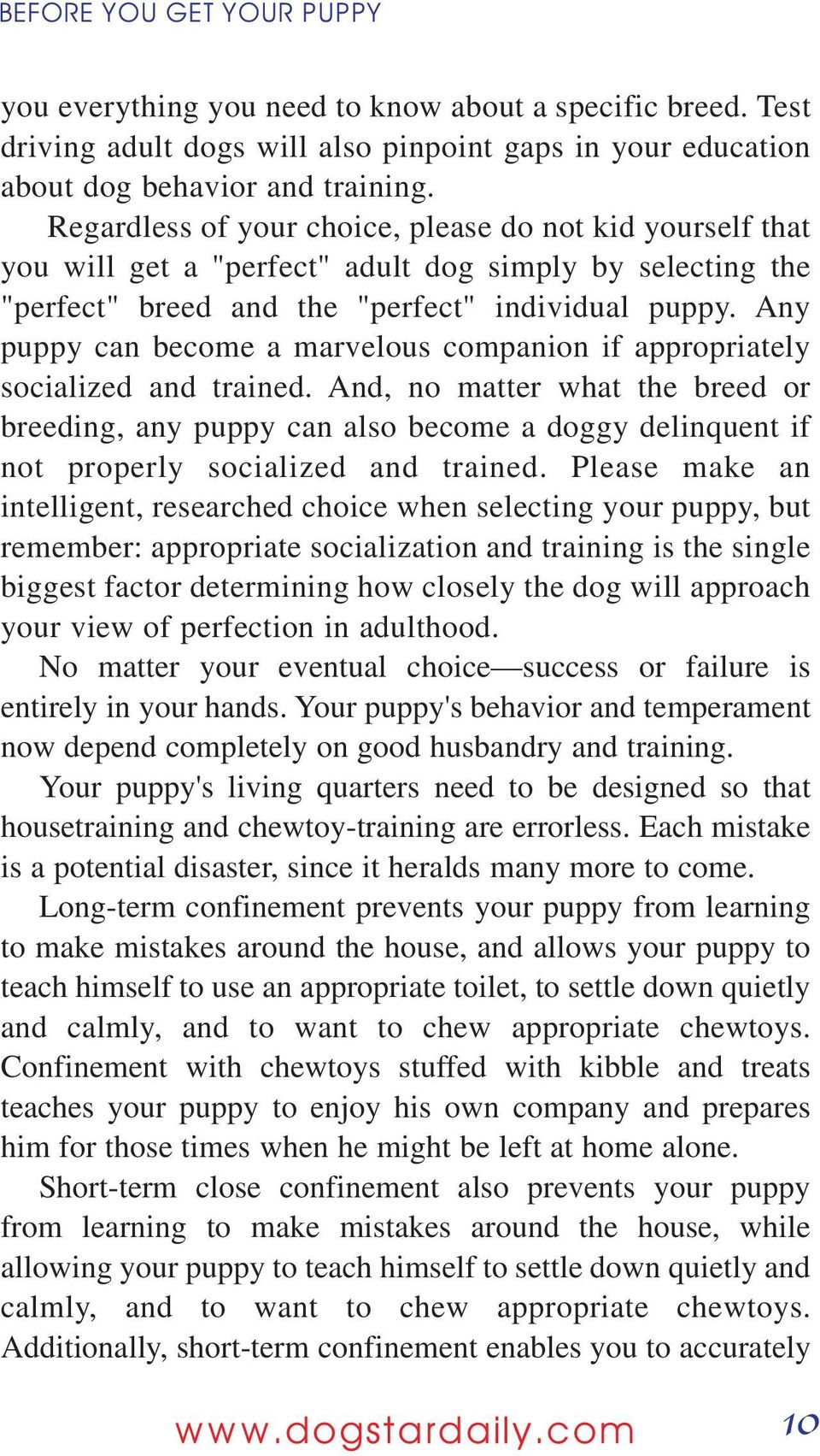 Any puppy can become a marvelous companion if appropriately socialized and trained.