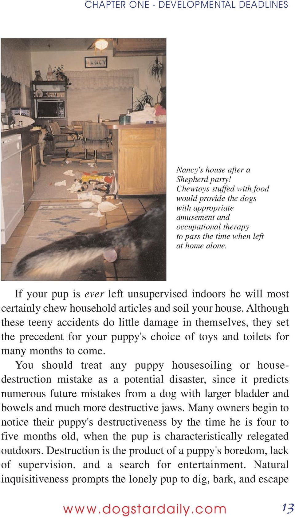 If your pup is ever left unsupervised indoors he will most certainly chew household articles and soil your house.