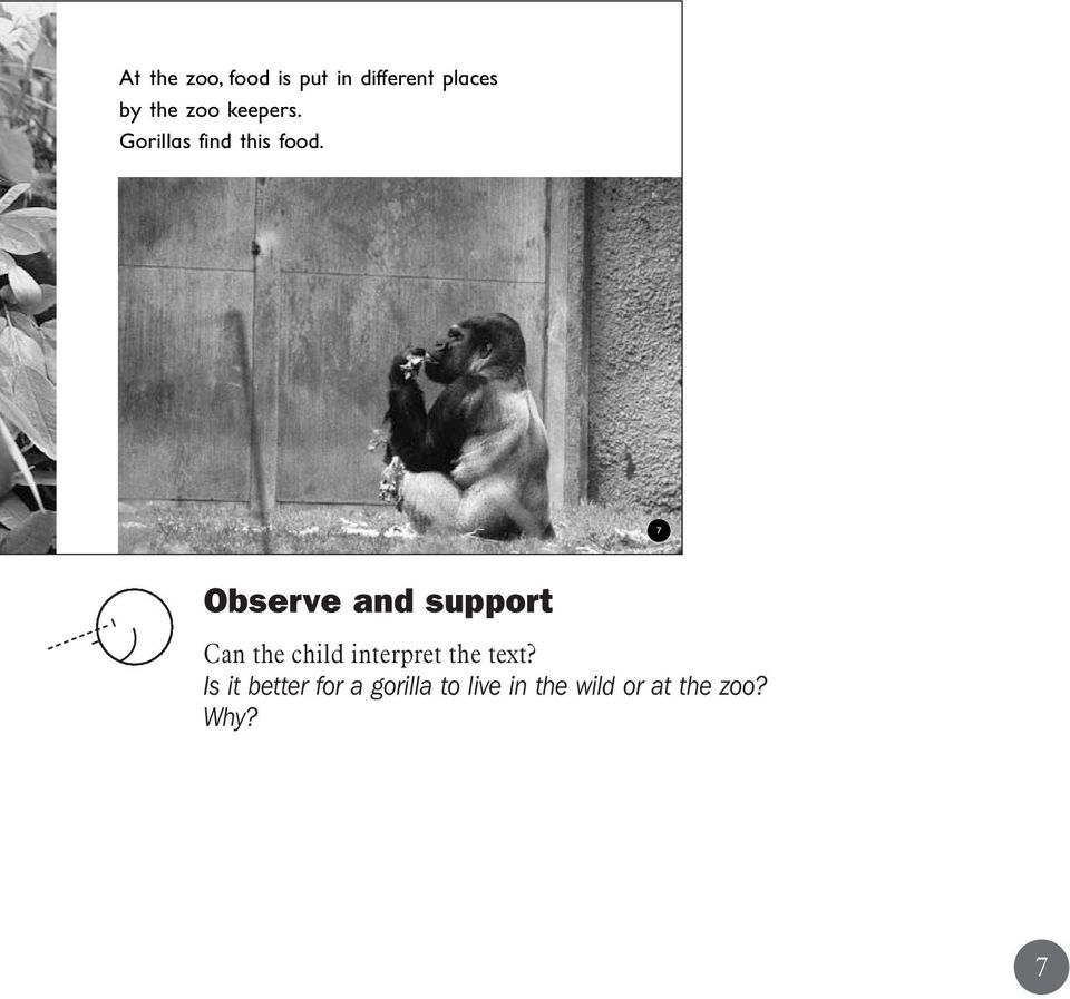 7 Observe and support Can the child interpret the