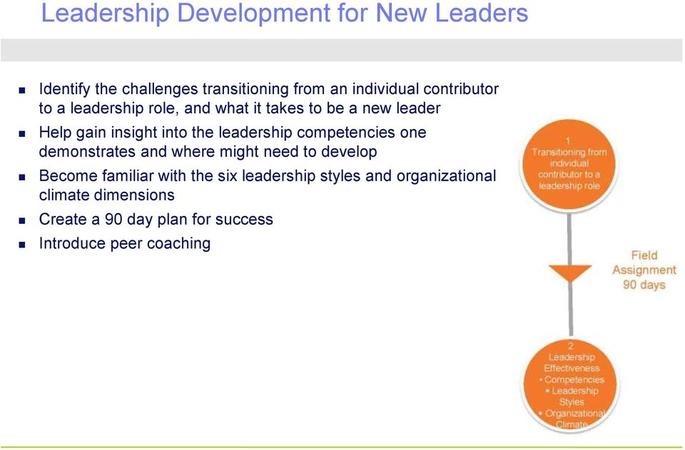 leadership competencies one demonstrates and where might need to develop Become familiar with the six