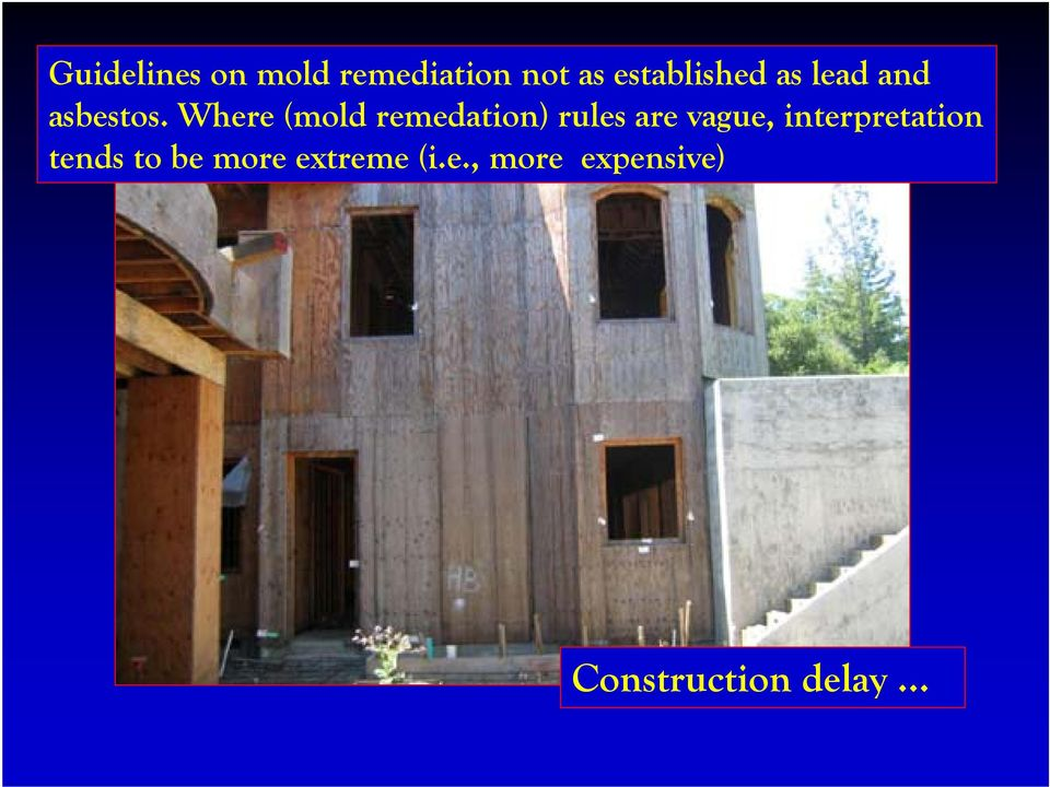 Where (mold remedation) rules are vague,